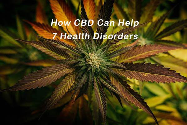 How CBD May Help 7 Health Disorders